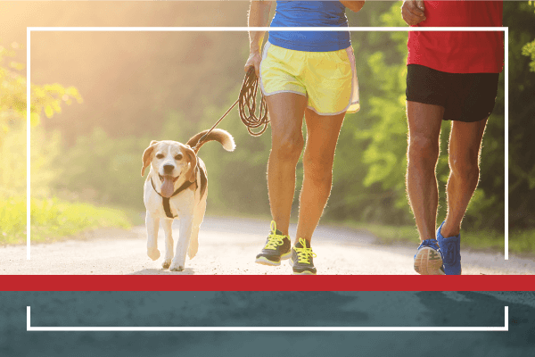 New Year's Resolution: Put Your Pet on the Path to Good Health!